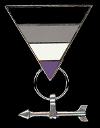 Asexual Aromantic Ace-Aro Lapel Pin
