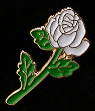 White Rose lapel pin to benefit ACLU